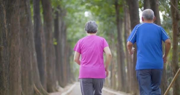 Glückliches Seniorenpaar läuft durch den Park