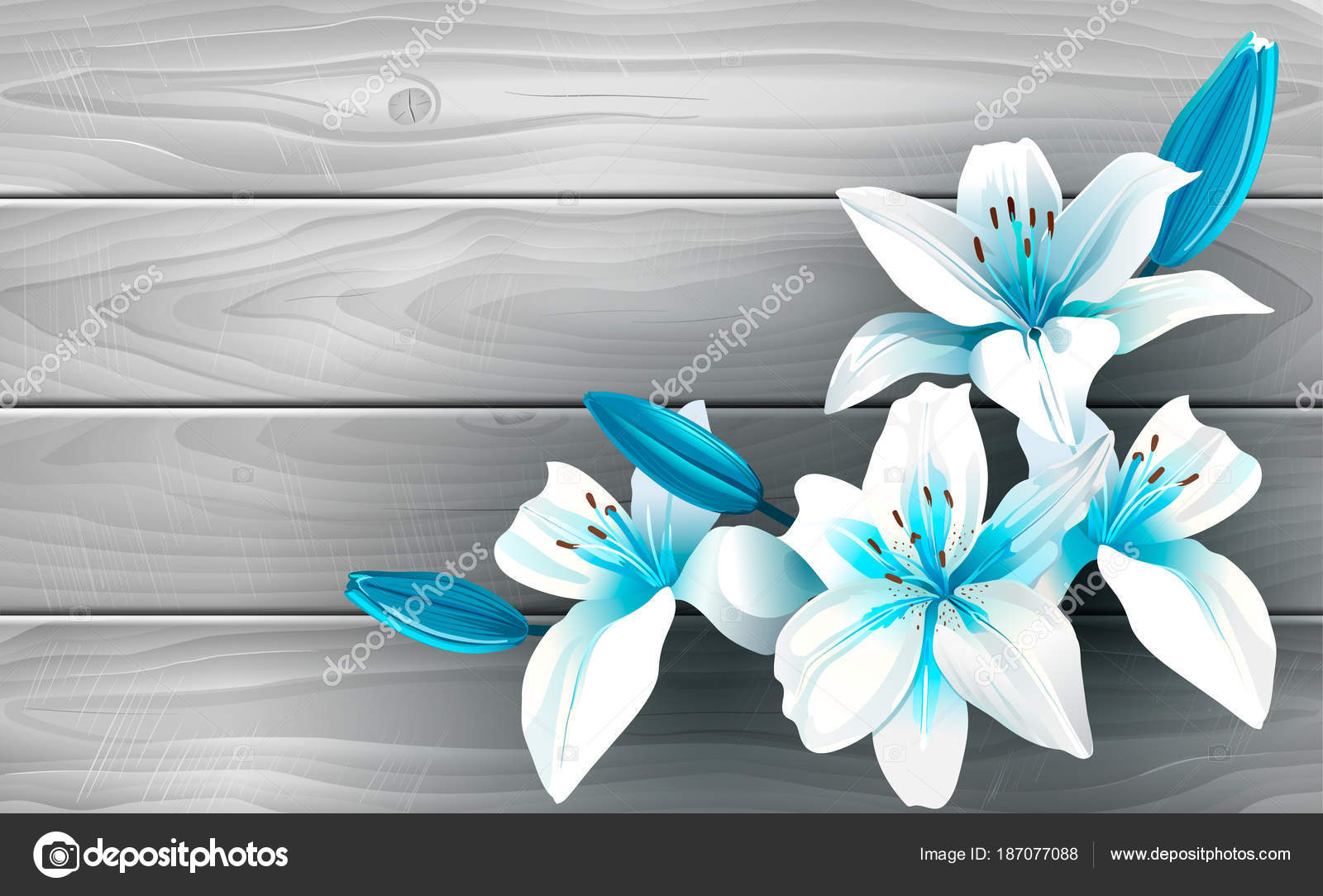 Blue And White Flowers On Wood Illustration Of Blue And White