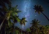 Noční snímek s palmami a mléčné dráhy v pozadí