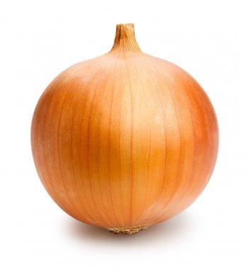 fresh spanish onion