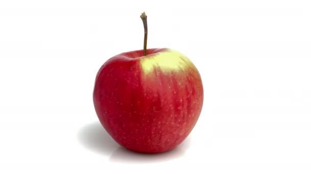 Apple izolované na bílém pozadí