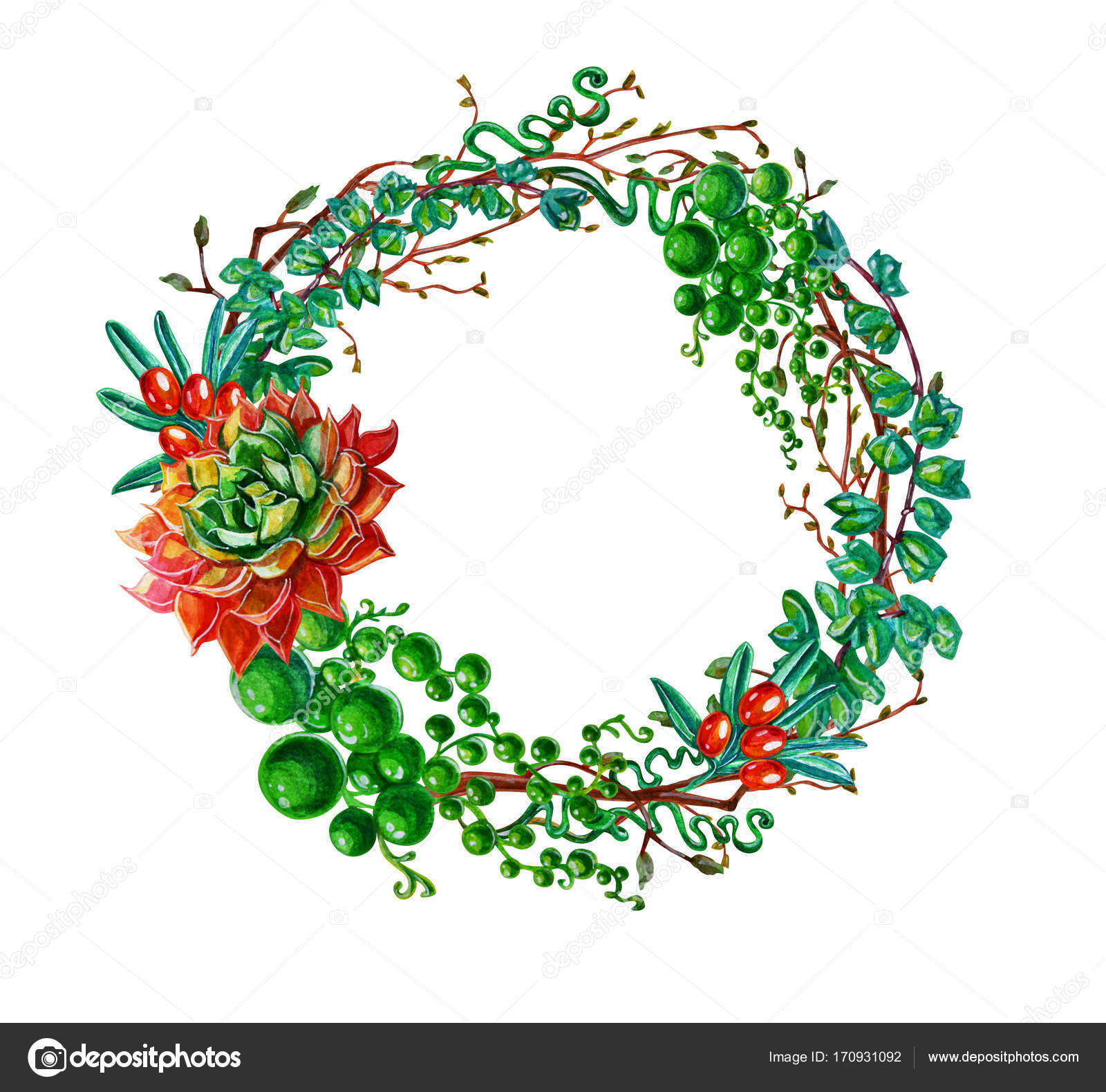Sukkulente Pflanze Und Zweig Rahmen Im Aquarell Stil. Ideal Für Hochzeit,  Zitat, Muster, Grußkarte, Logo, Einladungen, Schriftzug U2014 Foto Von Mimzya