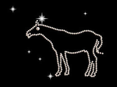 Jewel figurine horse decorated with white pearls.