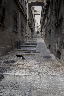 narrow empty street in old Jerusalem, Israel during the rainy season