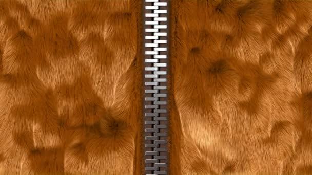 Decompressione di una cerniera, cappotto di pelliccia rosso opzione. animazione 3D, 4K