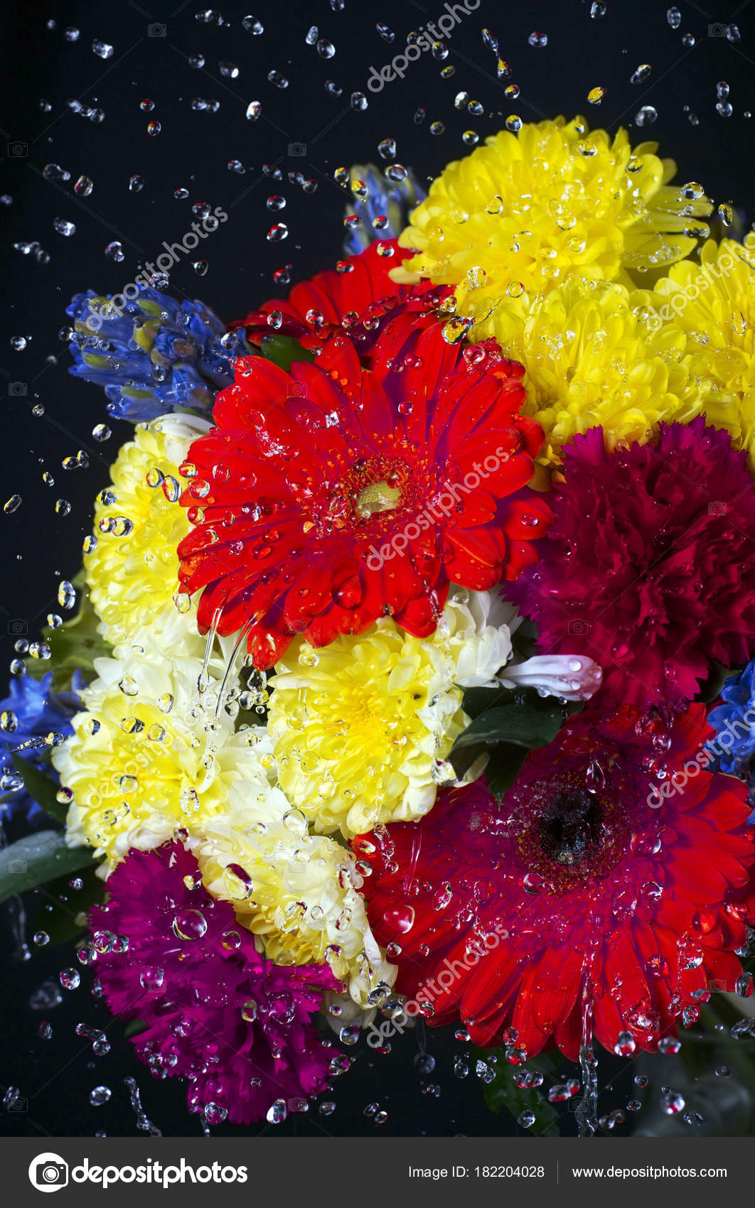 Photo Bunch Colorful Flowers Black Background Selective Focus ...