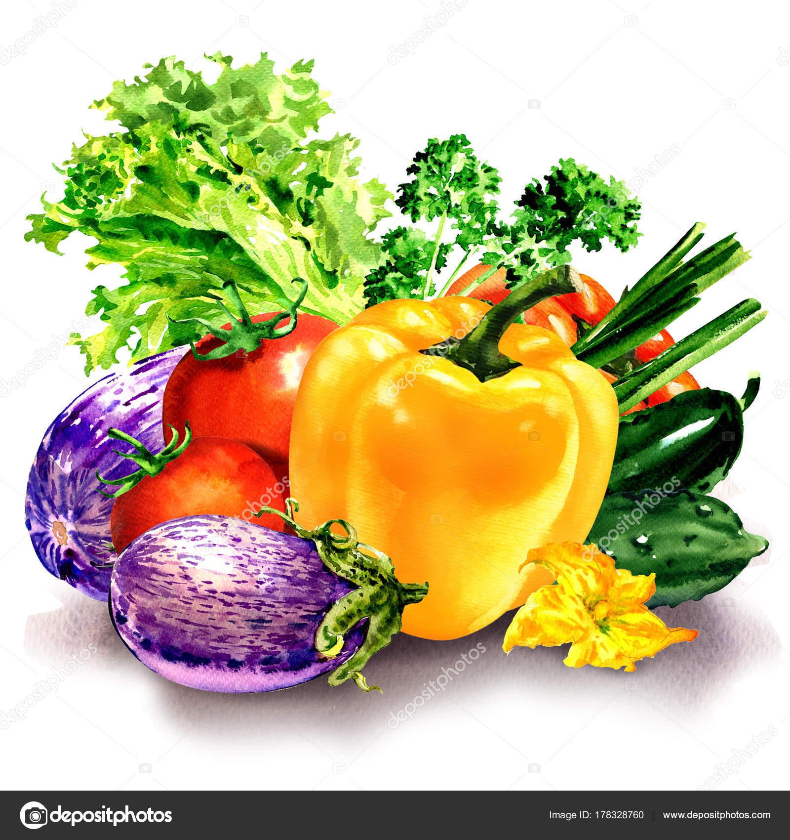Legumes Frais Composition Avec Poivrons Crus Aubergine Tomate