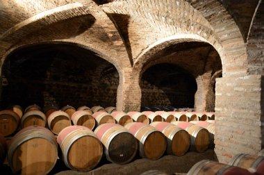 Wine barrels at the winery Santa Rita.
