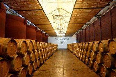 Wine barrels at the winery Viu Manent.
