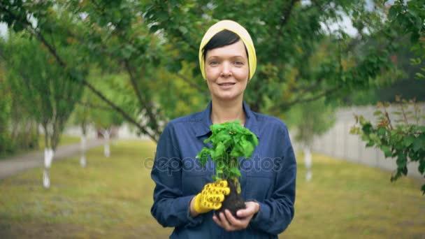 Ženské zahradník v zahradě