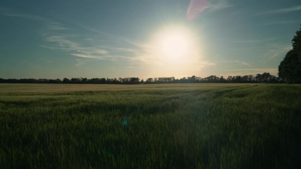 Paysage in Landschaft