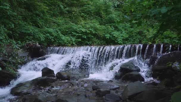 vodní krajina v letní sezóně