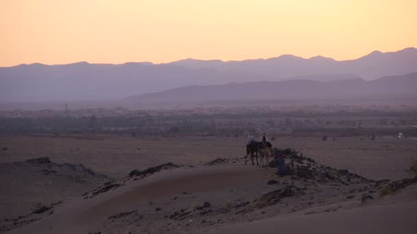 Tourist on camels in the Sahara