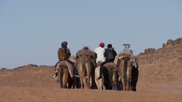 Group of tourist leave the Sahara desert on camels