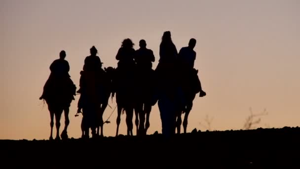 Silhouettes of a group of tourist on camels in the Sahara