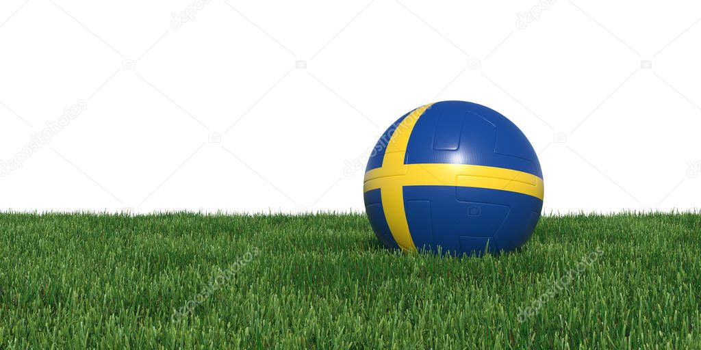 Sweden Swedish  flag soccer ball lying in grass world cup 2018