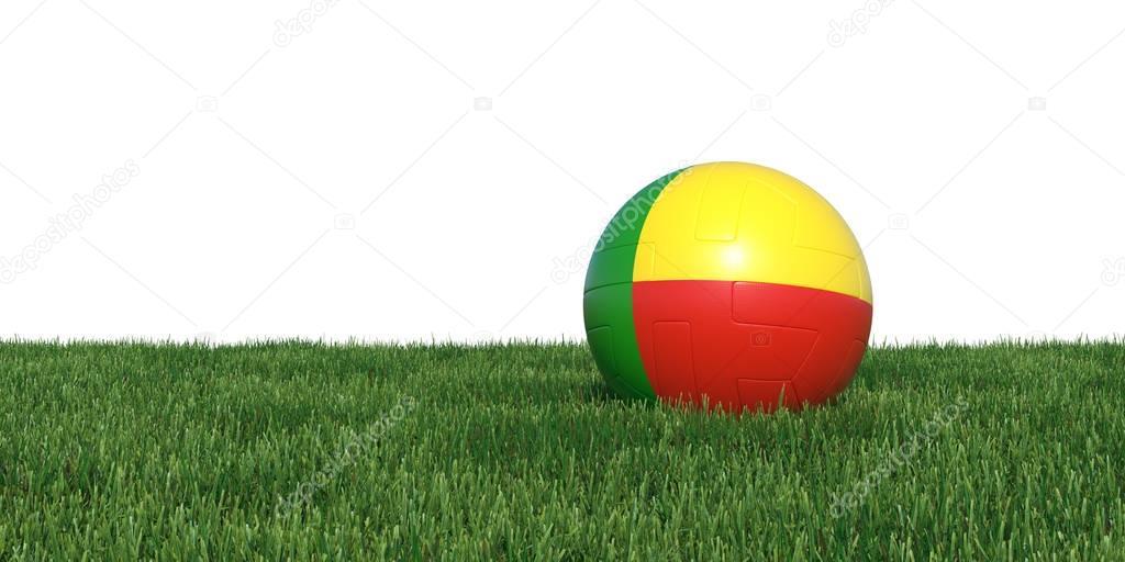 Benin Beninese flag soccer ball lying in grass