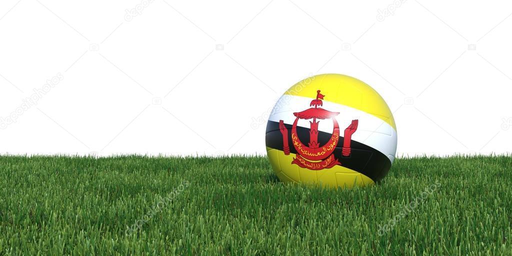 Brunei Bruneian flag soccer ball lying in grass