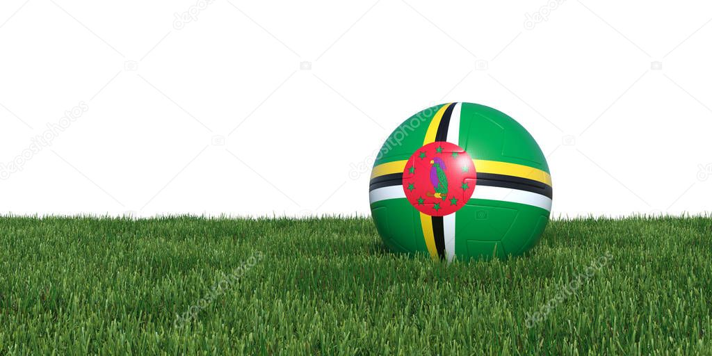 Dominica Dominican flag soccer ball lying in grass