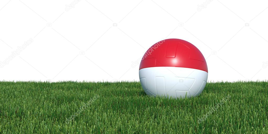 Indonesia Indonesian flag soccer ball lying in grass