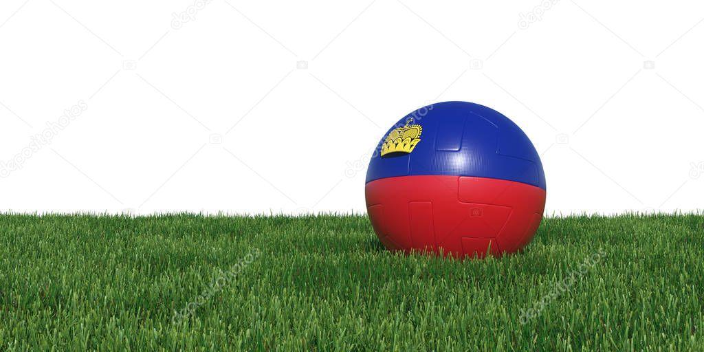 Liechtenstein flag soccer ball lying in grass