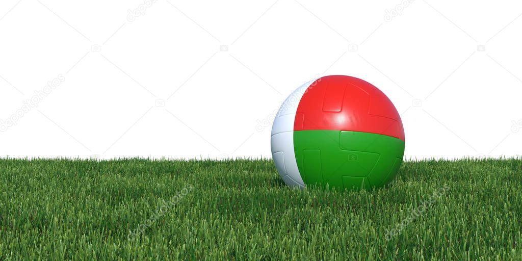 Madagascar Madagascan flag soccer ball lying in grass