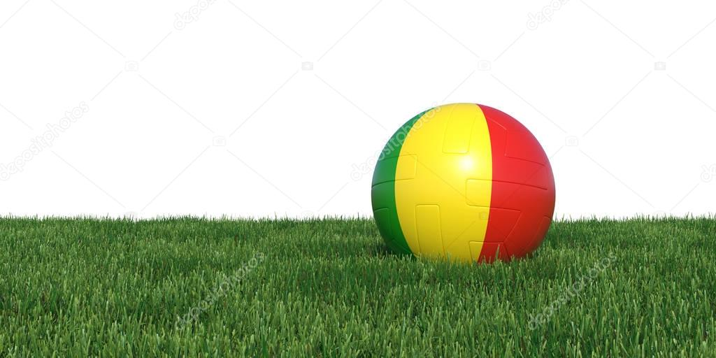 Mali Guinea Guineas flag soccer ball lying in grass