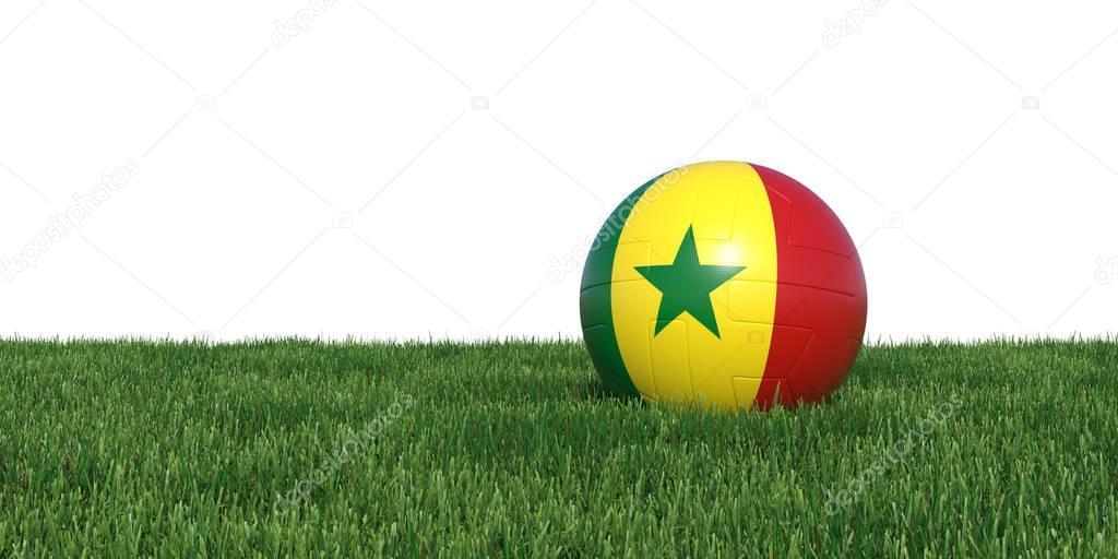 Senegal Senegalese flag soccer ball lying in grass