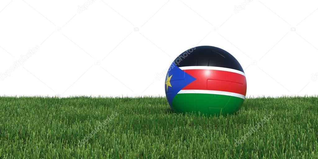 South Sudan flag soccer ball lying in grass