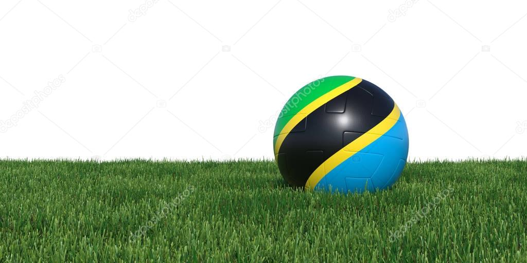 Tanzanian Tanzania flag soccer ball lying in grass