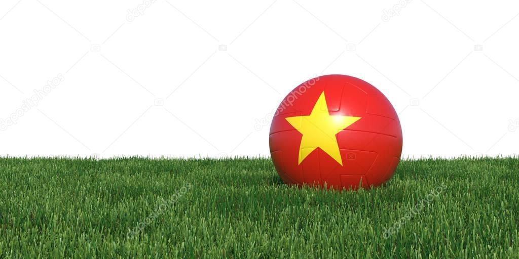 Vietnam Vietnamese flag soccer ball lying in grass