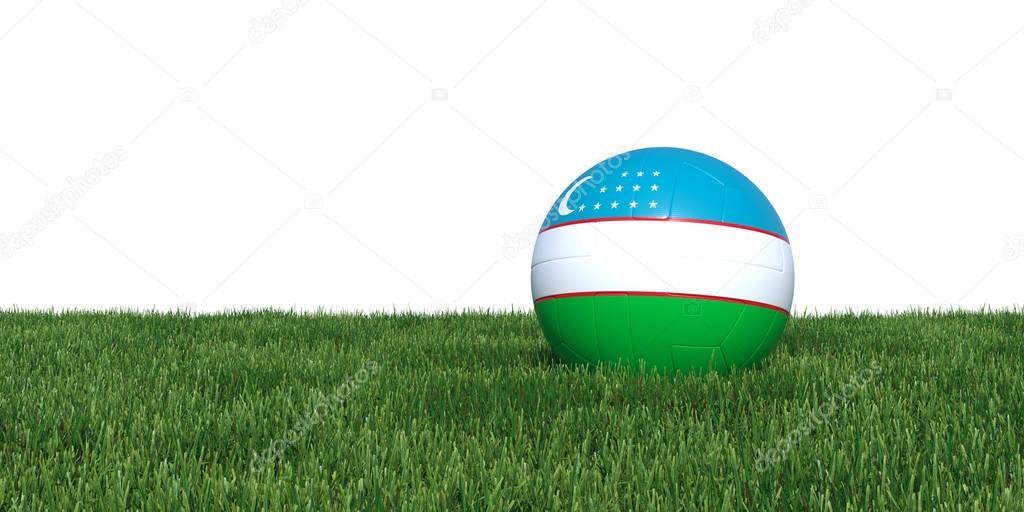 Uzbekistan Uzbek flag soccer ball lying in grass