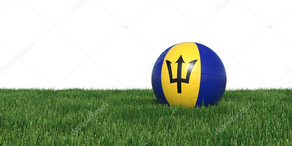 Barbados Barbadian flag soccer ball lying in grass