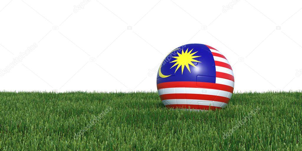 Malaysia Malaysian flag soccer ball lying in grass
