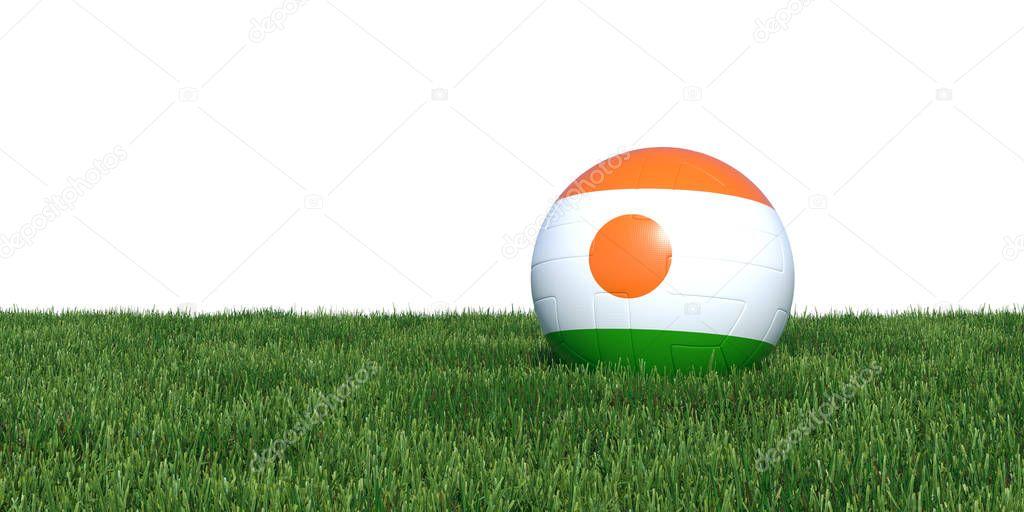 Niger Nigerian flag soccer ball lying in grass