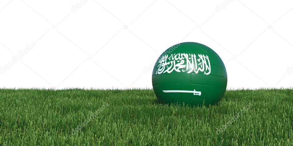 Saudi Arabian Saudi Arabia flag soccer ball lying in grass
