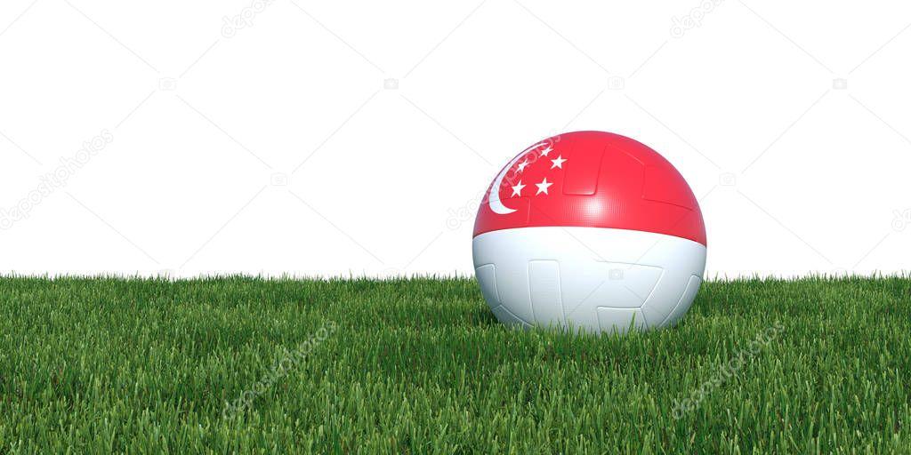 Singapore Singaporean flag soccer ball lying in grass