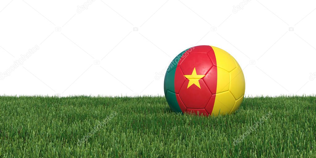 Cameroon Cameroonian flag soccer ball lying in grass