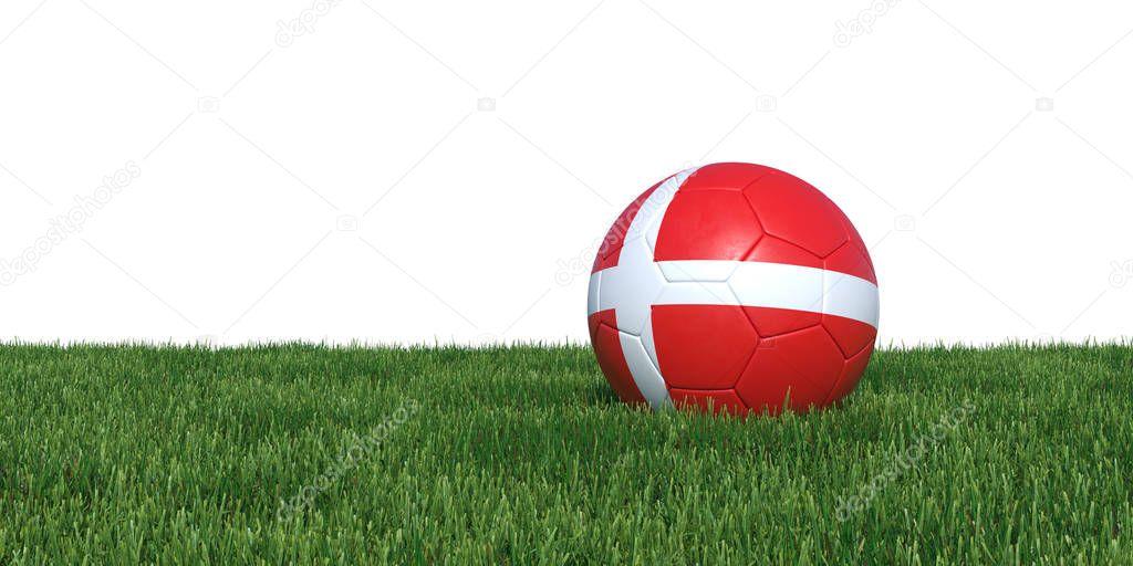Denmark flag soccer ball lying in grass