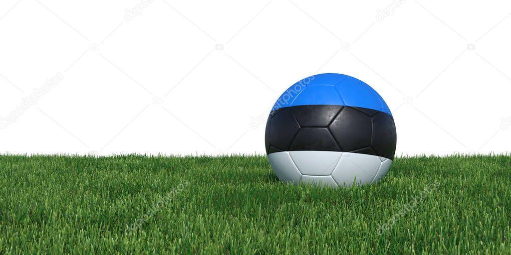 Estonia Estonian flag soccer ball lying in grass