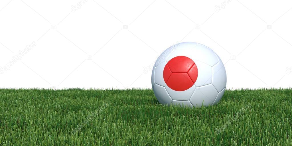 Japan Japanese flag soccer ball lying in grass