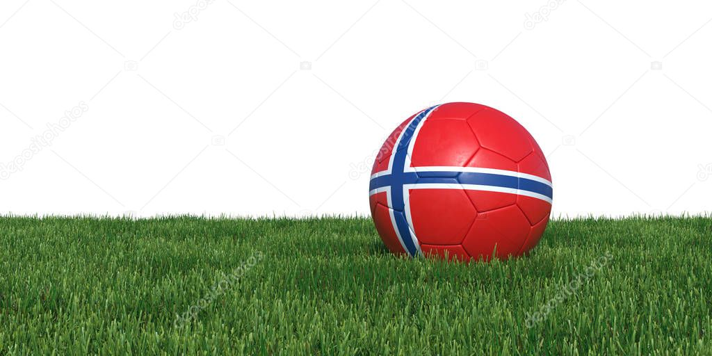 Norway Norwegian flag soccer ball lying in grass
