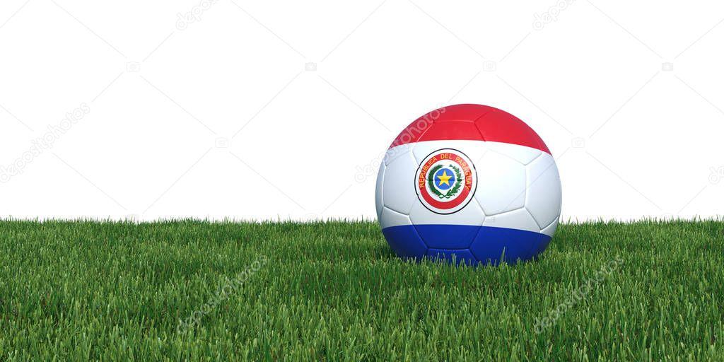Paraguay Paraguayan flag soccer ball lying in grass