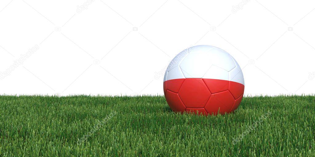 Polish Poland flag soccer ball lying in grass