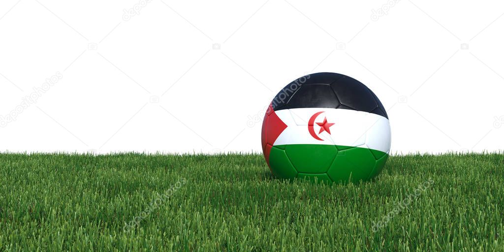 Sahrawi Arab Democratic Republic flag soccer ball lying in grass