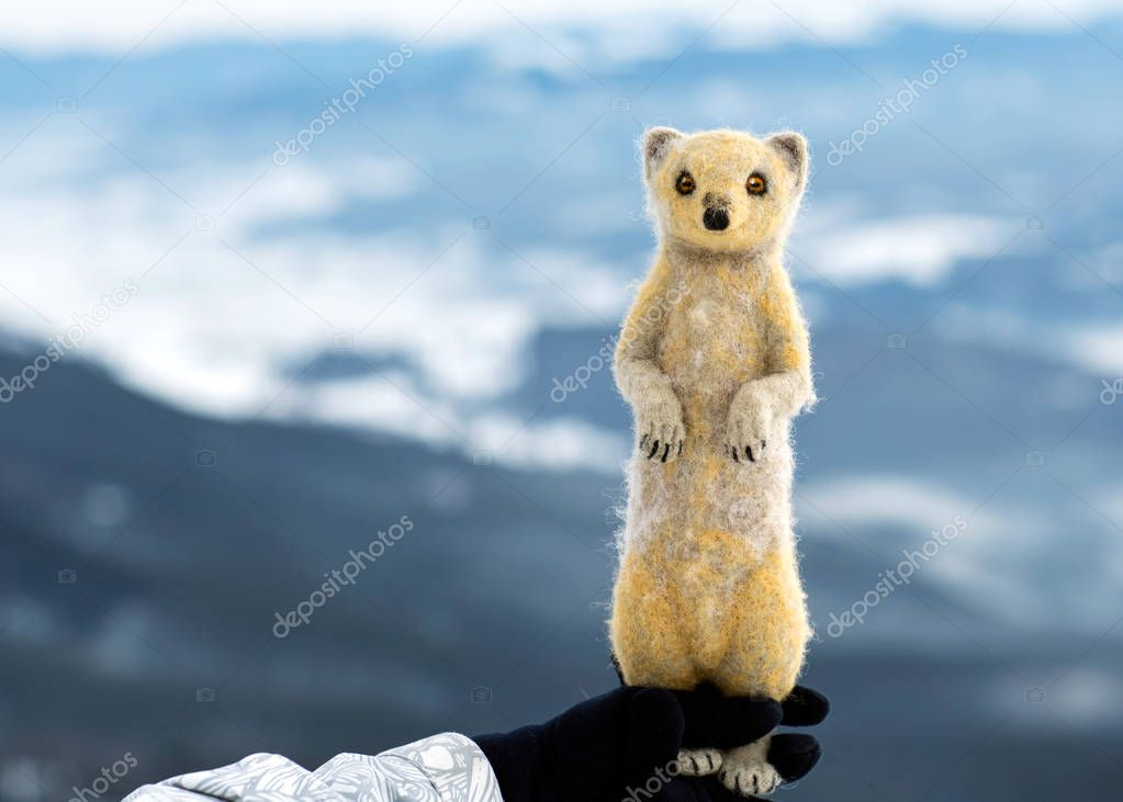 mongoose on top of a mountain, a symbol of strength and enduranc