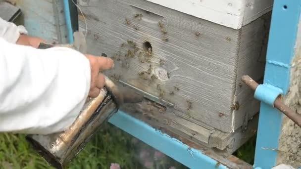 Der alte Imker Prozesse Eingang in den Bienenstock mit Rauch aus ...
