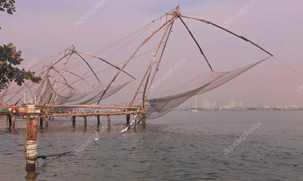 Nets and birds at cochin