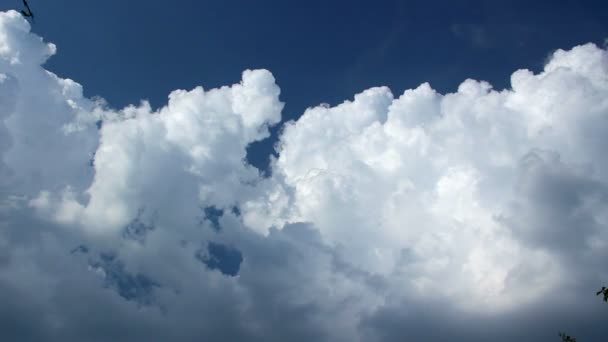 Clouds Running Across the Blue Sky, Timelapse of Vast Puffy Fluffy White Clouds, Sky Motion Background, Cloudscape with Large Building Clouds, Cloud Mass, Cumulus Clouds Form Against a Blue Sky