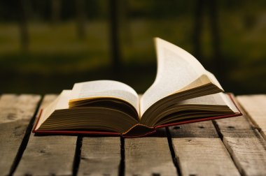 Thick book lying open on wooden surface, pages blowing in wind, beautiful night light setting, magic concept shoot